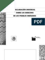 Declaracion Onu Pueblos Indigenas Nahuatl Huasteca