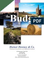 Horner Downey 2011 Budget Booklet