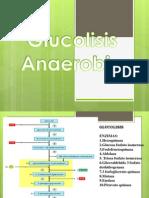 glucolisis  anaerobia