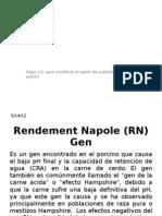 Rendement Napole Gen