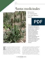 Interacciones entre plantas medicinales y otros fármacos