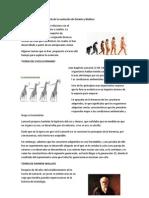 Evolución Biológica y teoría de la evolución de Darwin y Wallace