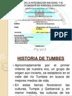 DIAGNOSTICO DE TUMBES