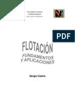 Flotacion - Fundamentos y Aplicaciones (Sergio Castro)
