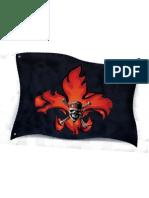 parche bandera