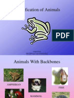 Animal Classification Power Point