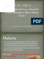 My Malaria Presentation