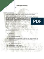 TRABAJO DE LIDERAZGO (1)