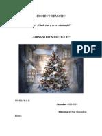 Proiect Tematic 3 Iarna Si Frumusetile Ei