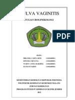 Vulva Vaginitis