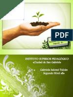 Estrategias del docente para formar niños/as responsables del su entorno natural.