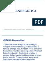 II._Bioenergetica