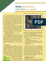 agrifoglio_16_2006