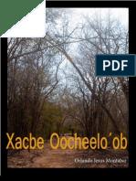 Xacbe Ochelo ob
