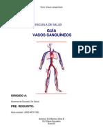 guiía vasos sanguíneos