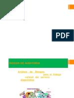 Riesgos y evidencia de auditoria.pptx