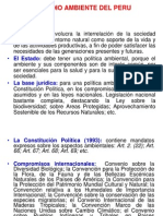 02-MEDIO_AMBIENTE_PERUANO