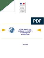 Guide Des Bonnes Pratiques en Matiere d IE[1]
