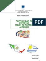 Factibilidad de Exportar Jabón de Tocador a México