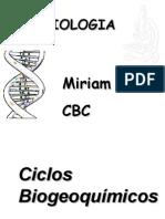 ciclo-do-nitrognio-1218159303194578-9