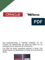 Oracle y Sqlserver p