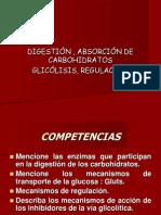 Diapositiva Bioquimica de Carbohidratos[1]