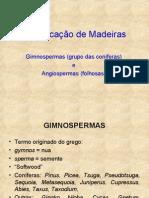 MacroLuteria2012 Copy