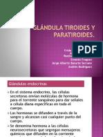 PRESENTACION FISIOLOGIA (1)-1