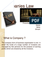 Companies Law (1)-Group9