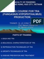 Tra Training