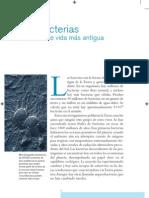 Microbios pp016