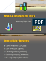 Media Biochemical Tests