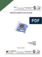 trabajo de procesamiento de datos Nº1