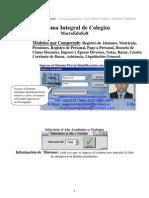 Sistema Integral de Colegios 2011