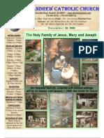 December 28, 2008 Bulletin