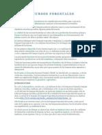 Recursos Forestales.docx Joselin