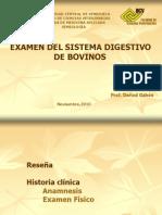 DIGESTIVO BOVINOS 2010