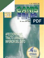 Canis & Felis - Afecciones Del Tracto Urinario Inferior en Gatos