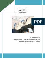 monografia de carichi
