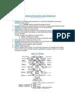 Fundamento Filosfico Del Derecho 2011