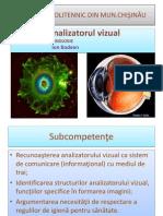 Analizator Vizual Ppt