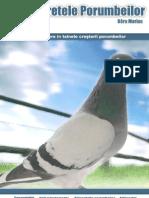 Cartea Porumbei Final Copy