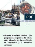 Citoesqueleto 2010A