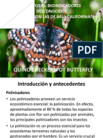 Mariposas Expo Power
