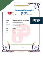 Silva Reyes Jesus Angel - 1130562