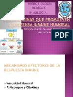 Interleukin As Que Promueven La Defensa Inmune Humoral