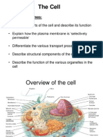 Review of Cells, Organelles and Transport Processes
