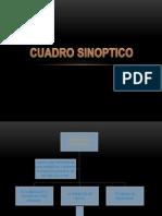 cuadro sinoptico