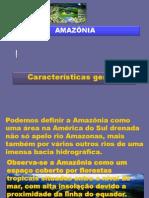 7_amazonia_3bim_10