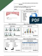 MSPP-De mau 1-2010-2011